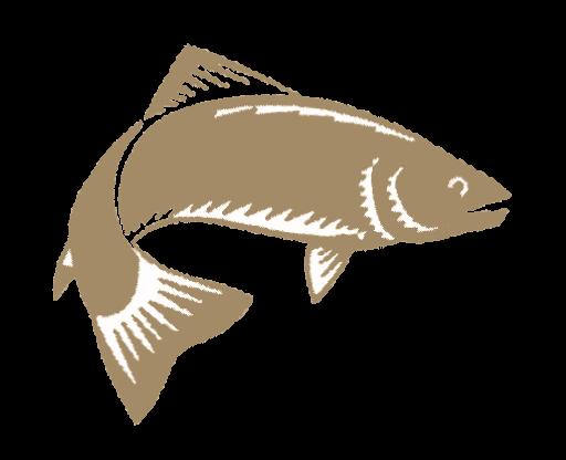 favicon fischer personal